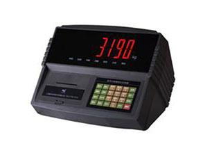 XK3190-DS3数字仪表