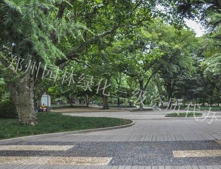 郑州园林绿化三级资质代办