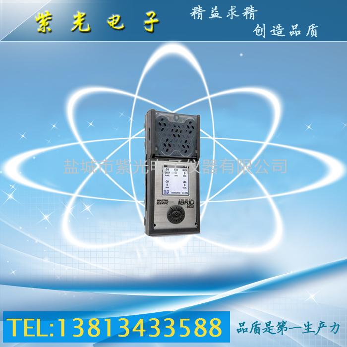 MX6复合气体检测仪