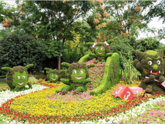 郑州花卉种苗批发