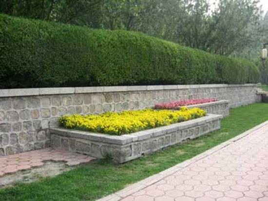 �州景�^花卉