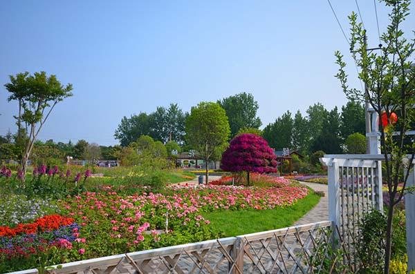 公園花卉景觀