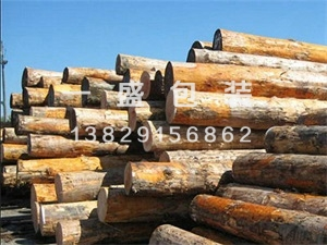 常用原木材料批发