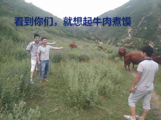 娼煎�冲��寮�淇╁����硅��瀛���娓哥�╁�句�