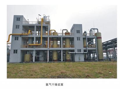 氯气、氯化氢、氯甲烷气体干燥装置(水分降至10PPm以下)