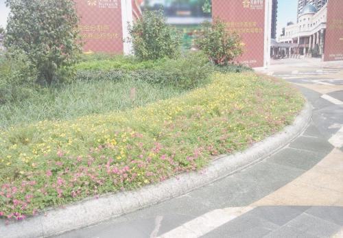 郑州路缘石