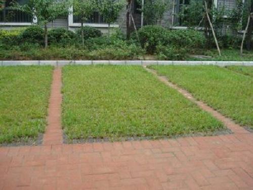 河南植草砖生产