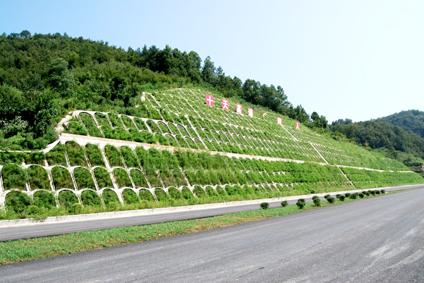 高速边坡防护网