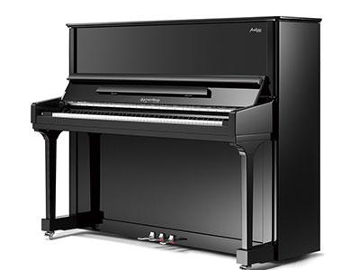 石家庄凯撒堡艺术家系列钢琴