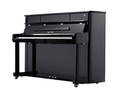 石家庄恺撒堡钢琴哪家好