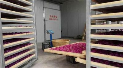 玫瑰花烘干机价格