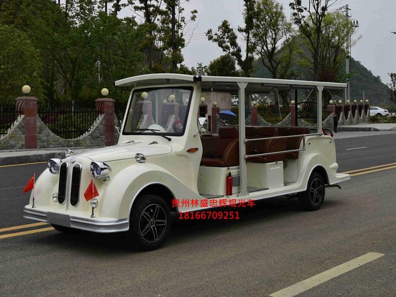 忠辉宝马款11座燃油观光车