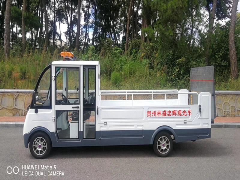 忠辉2座电动巡逻货车
