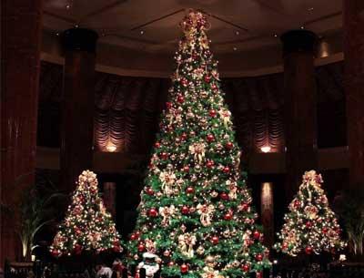 大型圣诞树安装