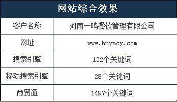 信阳网站推广品牌有哪些_春阳公司_网站平板端推广