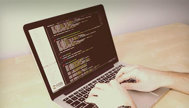 網站程序開發
