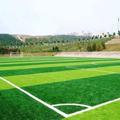 河北足球草坪