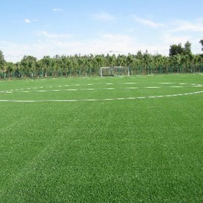 河北人造草坪足球场