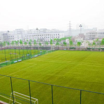 足球场人工草坪价格
