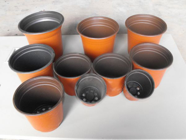 【图文】双色盆的材质_双色盆最适于景观绿化