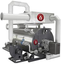 低氮.燃气导热油锅炉