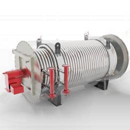 燃气导热油锅炉油气分离器
