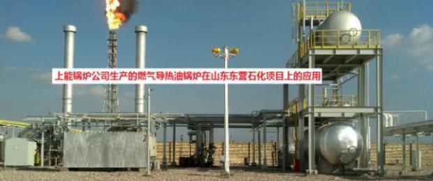 燃气导热油锅炉技术解决方案
