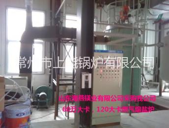 燃气熔盐炉系统组成