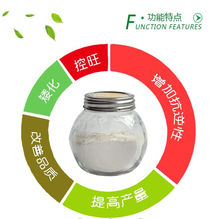 20%烯效唑可湿性粉剂