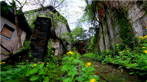 重慶開埠記錄片