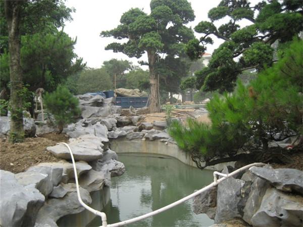 四川太湖石假山