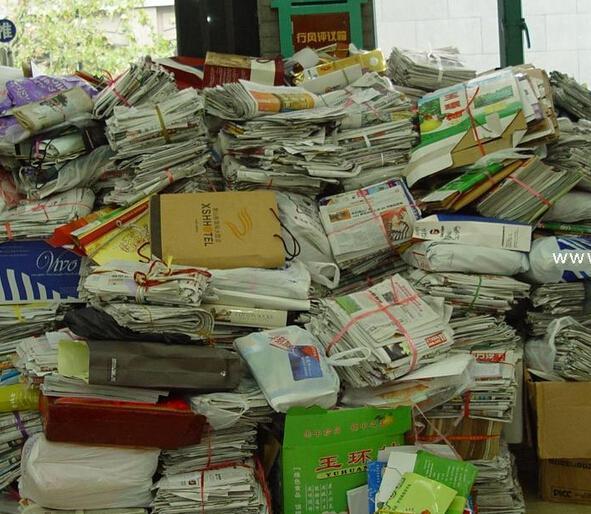 回收废纸哪家好