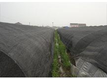 蔬菜大棚专用网