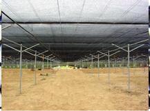 农用遮阳网蔬菜大棚网如何识别质量好坏 蔬菜大棚网该怎么使用呢