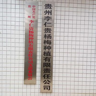 安顺杨梅树苗公司