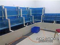 海鲜池材料