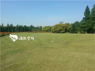 上海滨江森林公园基地