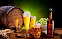 杭州啤酒游戏