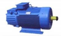 YE380-355电机