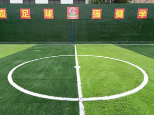 原阳人造草坪门球场