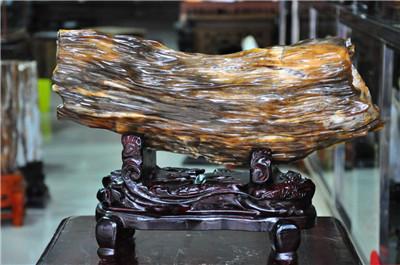 郑州木化石