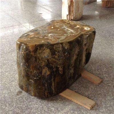 郑州树化石厂家