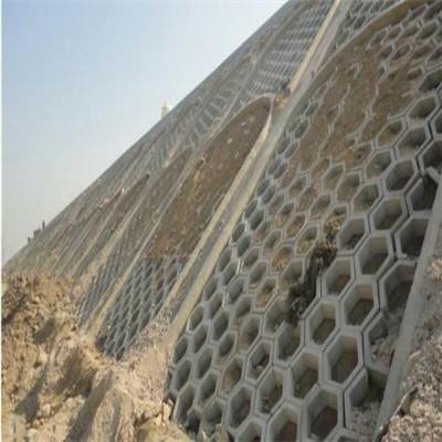 護坡磚廠家