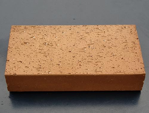 陶土真空砖价格
