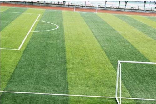 运动场人造草坪