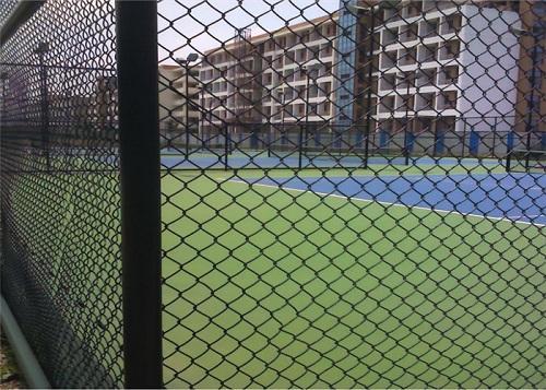河南球场围网