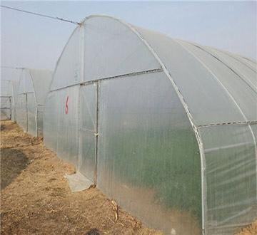 郑州塑料温室大棚
