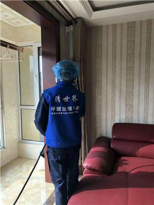 赵县室内除甲醛公司