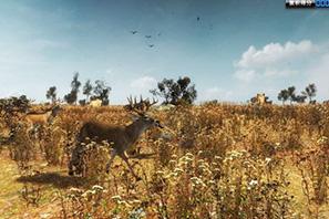 热带草原狩猎