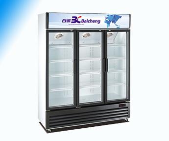 龙岩立式风冷展示柜